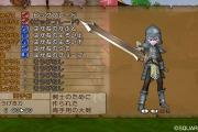 dragon-quest-x-wii-21