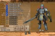 dragon-quest-x-wii-20
