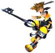 Kingdom Hearts II : Fusion - maitrise