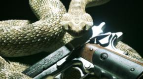 E3 2011 – Hitman : Absolution, le chauve n'est pas content !